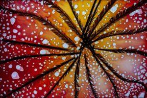 abstaktes Bild bunt, Diapositiv für Projektion, handcrafted, pfauenfedern mit rot gelb coloriertem Hintergrund