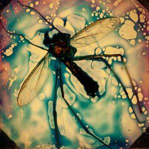abstaktes Bild bunt, Diapositiv für Projektion, handcrafted, insektenskelett in blau lila psychodelischem Hintergrund
